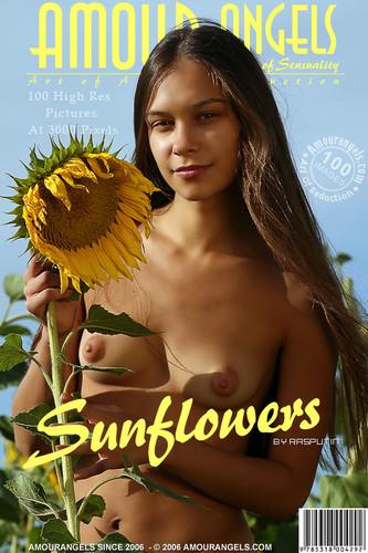 AmourAngels-Olga Sunflowers